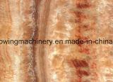 PVC模造大理石の装飾的な壁パネルの放出の生産ライン