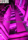 La lumière de PARITÉ de RGBWA la plus neuve 7X25W DEL pour l'éclairage extérieur