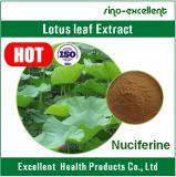 Poudre normale de lame de lotus de 100% Nuciferine 2%