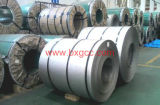Qualität Inox Roll 309S