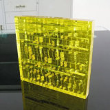 Fashion Clear Resin Insect Block Display para Decoração