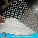 폴리에틸렌 플라스틱 편평한 그물세공 철망사 공장