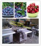 Morango automática da máquina de classificação da uva-do-monte que classifica a linha de embalagem da ponderação