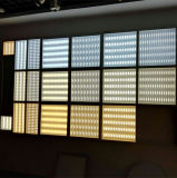 110lm/W het LEIDENE Licht van het Comité met 3D Goedgekeurd Ce RoHS van het Effect van de Verlichting