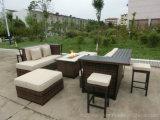 Muebles al aire libre del club de la barra de la armadura del hueco del fuego con el vector de cerámica