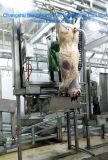 학살해 가축 --압축 공기를 넣은 상승
