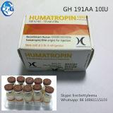 Esteróides da hormona 191AA K-Ig Jin-Tropin Gh 10iu do hectograma H
