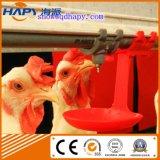 Оборудование птицефермы с сараем цыпленка низкой стоимости стальным