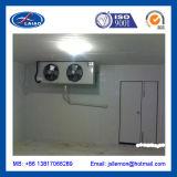 Sitio de conservación en cámara frigorífica del hotel de la cocina