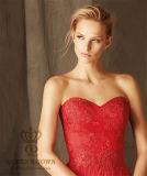 2017 линия выпускной вечер партии шнурка мантии платьев вечера Tulle длинний Bridal одевает официально платье