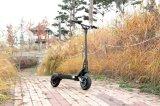 500watt 600wattは電気電気自転車のスクーター中国モーター二倍になる