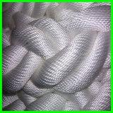 Certificat 48mm d'ABS/BV/Lr/faisceau de 8 souillures, corde tressée tressée d'amarrage de Nylon/PE/PP/UHMWPE