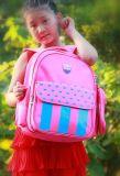 Наградной мешок школы/мешок Backpack школы (одобренные SGS/BSCI/RoHS/ISO9001)