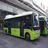 Autocarro escolar Tch10q com design elegante