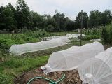 紫外線抵抗力がある農業のための端によって補強される非編まれたファブリック