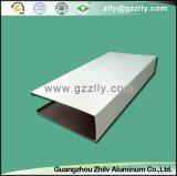 Techo de aluminio artístico para la decoración comercial