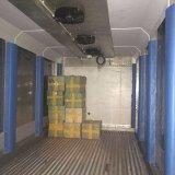 refrigerador del sitio de conservación en cámara frigorífica del envase de los 20FT con el compresor