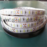 12/24V 의 LED 당 50-55lm를 가진 5630의 LED 지구