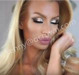 Silbernes Gold-u. Bronzen-Funkeln-Augenschminke-Puder