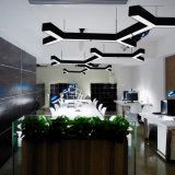 Lineare chiaro di DIY 80W LED