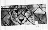 Esteira antiderrapante Mousepad de Mosuepad da almofada de rato do estilo do tigre grande grande para o rato ótico do laser