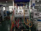 dispensador del combustible 3-Pump&6-Nozzle&6-Displays (Rt-W366)