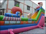 Brinquedos infláveis gigantes Fun Fair Bouncy Castle for Amusement (T6-030)