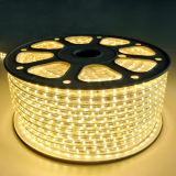 Luminosità di prezzi di fabbrica alta 3528 strisce della guarnizione del PVC