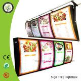 La publicité du cadre léger d'étalage de menu de tissu