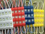 Cómo sobre el módulo de la luz del LED Futuro