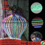Cabo flexível de néon Multicolor de RoHS Christma do Ce do diodo emissor de luz 12V 220V dos Valentim para a decoração do banquete de casamento