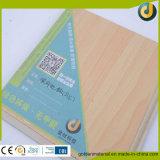 Plancher de tuiles en plastique de PVC de plancher antidérapage d'intérieur de vinyle