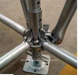 Fornitore Ringlock galvanizzato acciaio dell'armatura