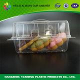 처분할 수 있는 저장 조가비 음식 상자