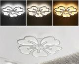 Garantie neuve 100% de plafonnier de l'acrylique DEL