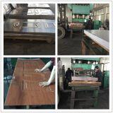 Piel de la puerta exterior del acero de Morden hecha en China