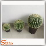 Искусственние бонзаи кактуса для крытого украшения