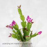 Beste Verkopende Imitatie Kunstmatige Altijdgroene Bloemen Hight
