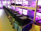 PARIDADE ao ar livre quente do diodo emissor de luz da venda 72X3w 3in1 RGB para a iluminação do jardim