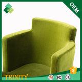 Cadeira de asa luxuoso da parte traseira da elevação para o apartamento na faia (ZSC-27)