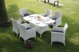 Environnement classique Meubles de jardin en rotin Wicker Dining Set