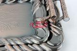 Bandeja del arte del laminado del bronce del acero inoxidable (FT-0628)