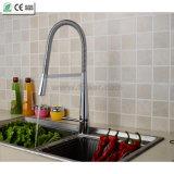 Abaisser le robinet simple d'évier de cuisine de poignée de robinet de toilettes de cuisine (QH3055K)