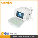 Scanner portatif d'ultrason du prix usine 10-Inch avec la sonde convexe (RUS-6000A) - Fanny