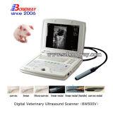 Veterinärultraschall-Instrumentportable-Scanner