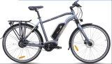 El tipo de la ciudad, Mediados de-Conduce la bici eléctrica (TDB19Z)