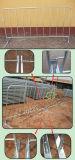 Galvanizado/cubrió las barreras baratas de acero del control de muchedumbre de las barreras de seguridad de la muchedumbre de la barricada