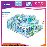 Nuovo Snowing Theme Indoor Playground per Christmas (QL-151130A)