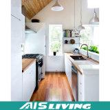 Mobília disponível do gabinete de cozinha do projeto moderno da alta qualidade (AIS-K981)