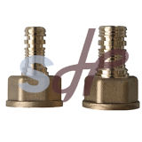 Schmieden Brass Female Thread Pex Fitting für Pex Pipe